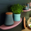 Schuller Pastel Rose Satin Curved Floating Shelves By Complete Kitchens