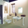 avalon wall hung wc 1